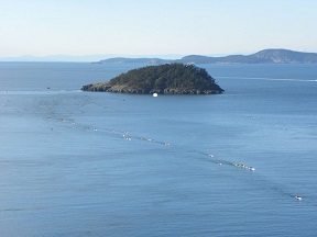 Deception Pass Dash photo
