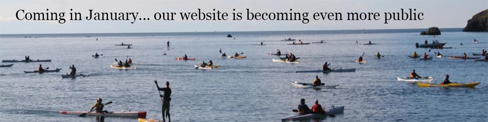 Opening Website Banner