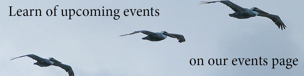 Events Page Banner